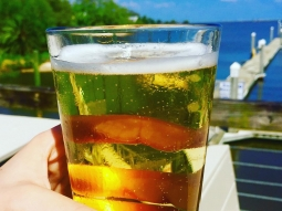 We're thirsty... Come drink with us during HAPPY HOUR from 4-6 every day at every bar: $2 drafts, $3 well drinks, $4 house wine  #downtownpensacola #pensacola #happyhour #FishHousePensacola #upsideofflorida